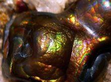 Агат камень: магические и лечебные свойства, кому подходит по зодиаку, как отличить подделку