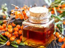 Облепиха: масло и сырая ягода. Польза и вред для организма, как принимать при различных заболеваниях